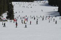 Soldiers from 1st Battalion, 157th Infantry Regiment (Mountain), Colorado Army National Guard, along with veterans and dependents of the 10th Mountain Division and 10th Special Forces Group, ski in a serpentine pattern during the 43rd annual 10th Mountain Div. Ski-In Daze at Ski Cooper March 2, 2018. (U.S. Army National Guard photo/Warren W. Wright Jr.)